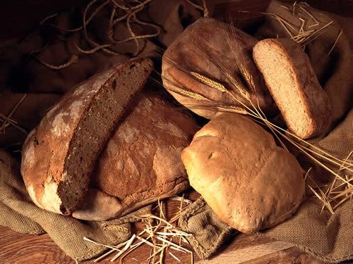 Dan kruha u našoj školi