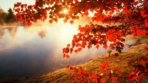 jesen 101