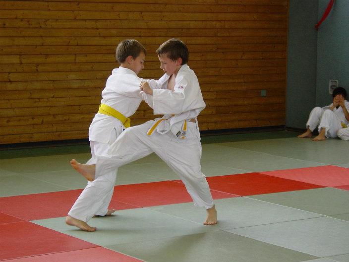 judo 555